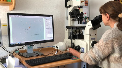 Foto einer Frau. Sie schaut durch ein großes Mikroskop. Links neben ihr steht ein Tisch mit Computerbildschirm und Tastatur.