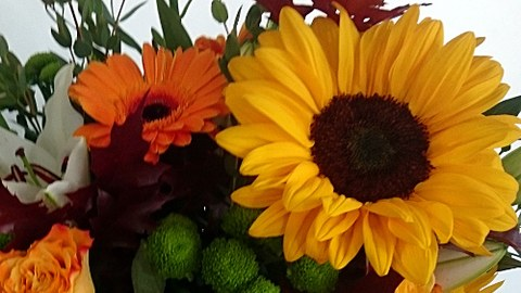 Blumenstr