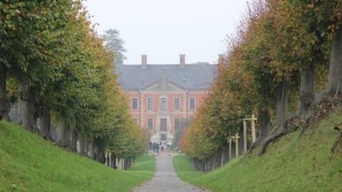Foto zeigt die Baumallee zum Schloss Bothmer.