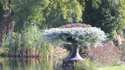 Foto zeigt eine Gartenvase im Schloss Sanssouci in Potsdam. Diese befindet sich im Teichrand und ist üppig bepflanzt.