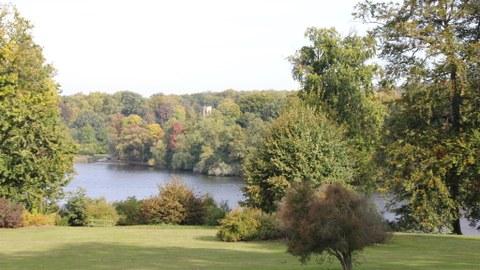Foto zeigt den Park Babelsberg. Eine Wiese grenzt direkt an einen Teich, welcher von unzähligen Gehölzen umgeben ist.