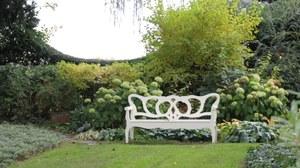 Foto zeigt eine weiße Gartenbank im Garten von Karl Förster. Im Hintergund ist eine ausdifferenzierte Pflanzung zu sehen.