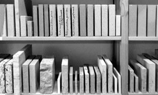 Foto eines Regals mit Steinprobem aus der Materialbibliothek.