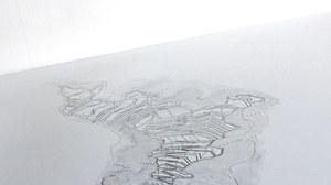 Wiederkehr der Landschaft: ein Ausstellungsobjekt