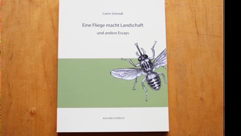 """Foto der Publikation """"Eine Fliege macht Landschaft"""" auf einem Tisch liegend."""