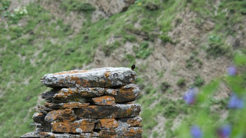 Foto eines Steinhaufens im Kaukausus