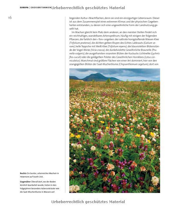 TUD - Lehr- und Forschungsgebiet Pflanzenverwendung - Beispiel 1 (teil2)