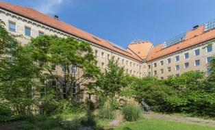Rückseite des Hülße-Baus der TU Dresden. Im Innenhof befindet sich eine große Wiese mit zahlreiche Pflanzen und einigen Bäumen.