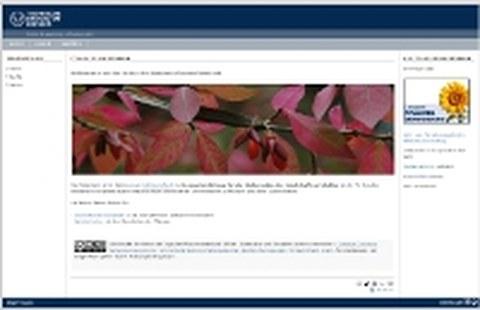 Screenshot der Pflanzendatenbank des Instituts für Landschaftsarchitektur