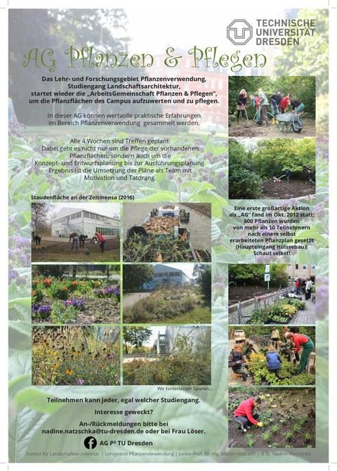 AG Pflanzen und Pflegen