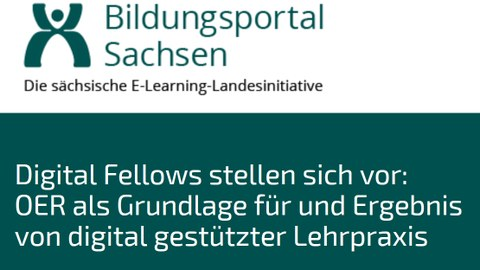 Digital Fellows