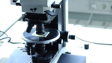 Lichtmikroskop