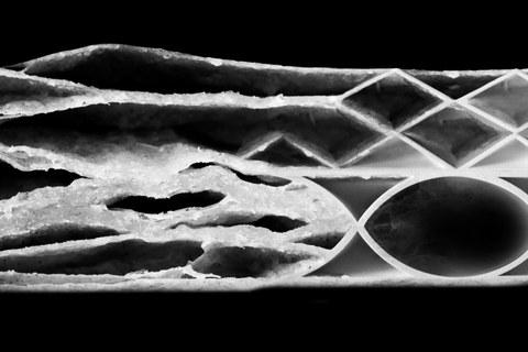 Visualisierung zeigt eine fiktive materialminimierte Carbonbetonstruktur. Die Bildretusche besteht aus mehreren verschiednenen Fotos von verschiedenen Strukturen.