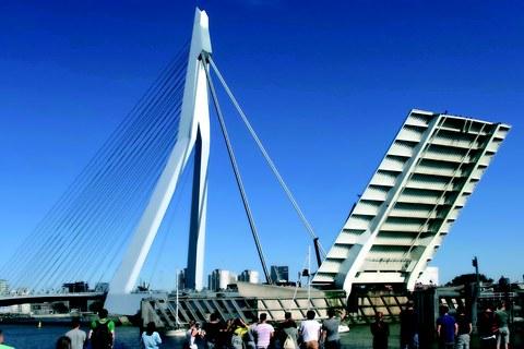 Brückenexkursion Erasmusbrücke Rotterdam