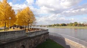 Elbe im Herbst