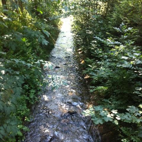 Trapezgerinne der Naturversuchsanlage