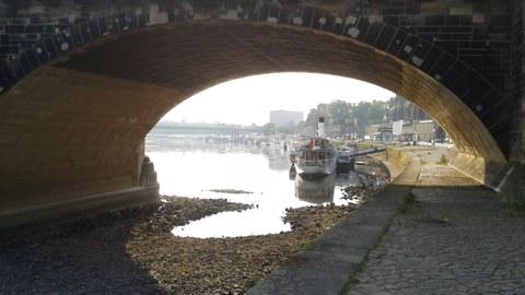 Blick durch die Augustusbrücke bei Niedrigwasser auf die Dampfer der Sächsischen Dampfschiffahrt im August 2015