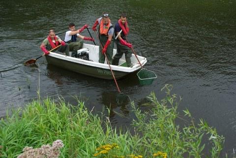 Fischer mit Keschern in der Hand fahren auf einem kleinen Boot die Aller hinab