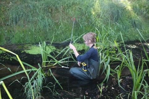 Messung der Fließgeschwindigkeiten bei Feldarbeit am Mutzschener Wasser