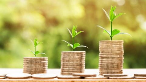 Wachstumskurve mit Geld und Pflanzen