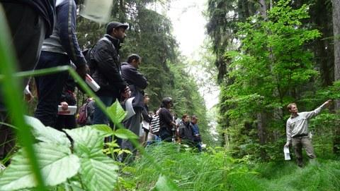 Teilnehmer im Wald bei einer Exkursion zu Bodenschutz und Forstwirtschaft