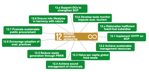 Resource efficiency within the SDGs