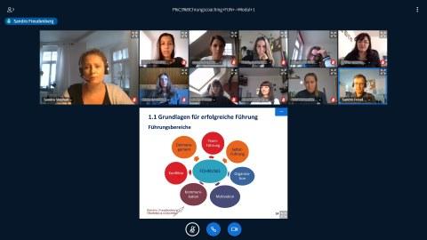 Screenshot, virtuelles Treffen, online Seminar, Web Kamera, Teilnehmende