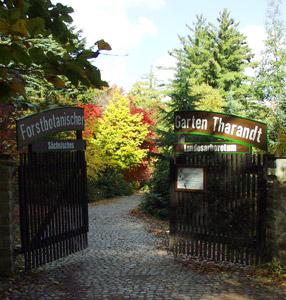 Eingangstor vom Tharandter Wald im Herbst