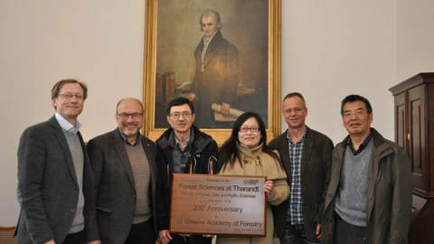 Representatives from the Chinese Academy of Forestry (CAF) visit in Tharandt