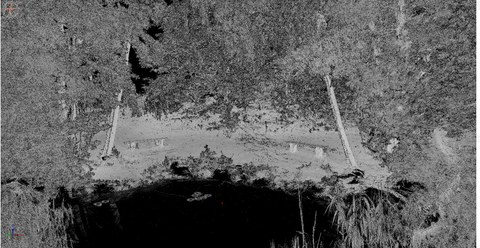 Das Bild zeigt eine Badestelle am Tornower See als Punktwolke. Im Vordergrund ist das offene Wasser des Sees, links und rechts ist Schilf und in der Mitte befindet sich das Ufer mit zwei Bänken und einigen Bäumen.