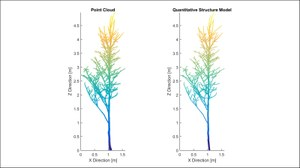 The figure shows a single tree on the right as a point cloud and on the left the same single tree as a QMS model.