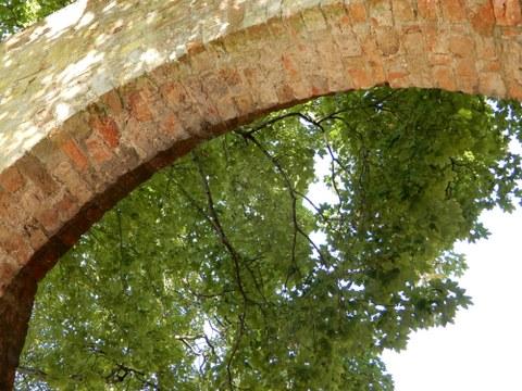 Ein gemauerter Torbogen reicht vom linken bis zum rechten Bildrand und bildet die obere Begrenzung des Bildes. Der Blick durch den Bogen zeigt eine große Baumkrone vor freiem Himmel.