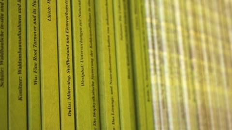 Bücherreihe_grün