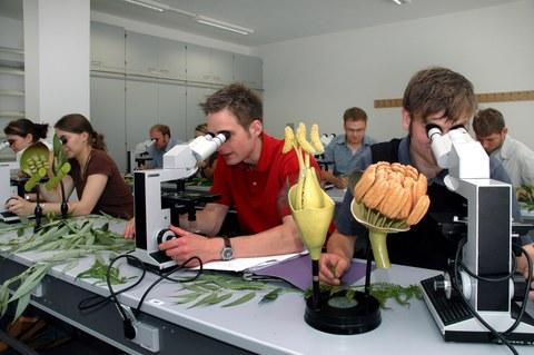 Bachelorstudiengang Forstwissenschaften