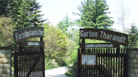 Forstbotanischer Garten, Tharandt