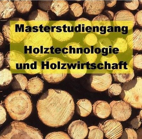 Masterstudiengang Holztechnologie und Holzwirtschaft