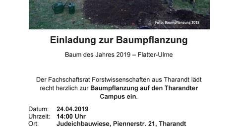 Einladung Baumpflanzung 2019