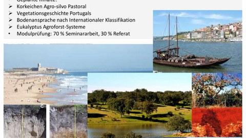 Exkursion Portugal 2020