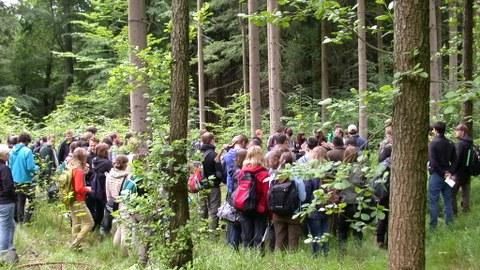Waldbauübung im Tharandter Wald
