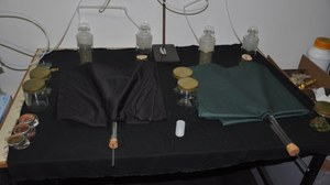 Y-Olfaktometerversuch