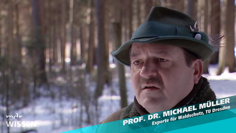 Prof. Müller