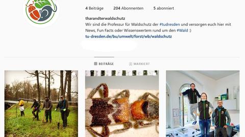 Instagram_WS