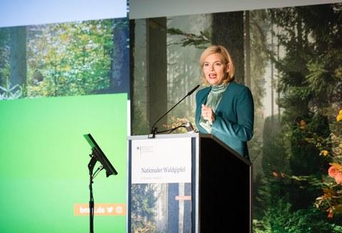 Waldgipfel 2019