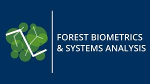 Logo des Lehrstuhls für Forstliche Biometrie und Systemanalyse
