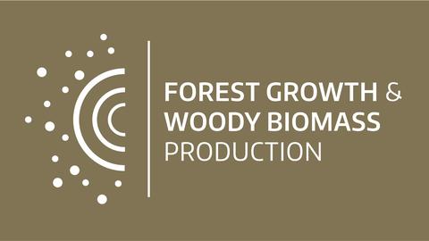 Logo Waldwachstum und Holzmesskunde