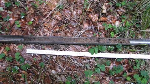 Das Bild zeigt einen Bohrstock mit Bodenmaterial