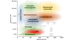 Spatial-temporal scales in environmental remote sensing