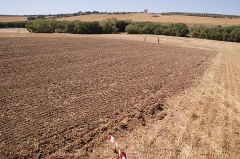 soil_erosion_andalusia