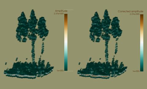 Vergleich von Voxelräumen einer Fichtengruppe abgeleitet von Originalamplituden und dämpfungskorrigierten Amplituden