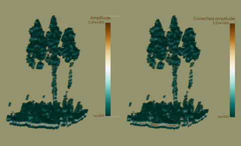 Comparison of voxelspaces of three spruces obtained from raw amplitudes and attenuation-corrected amplitudes